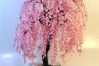 Робимо своїми руками квітуче дерево сакури