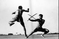 Еволюція бойових мистецтв