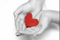 Як навчити дітей милосердю