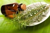 Олія чайного дерева для волосся