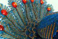 Плетіння чудового павича з бісеру