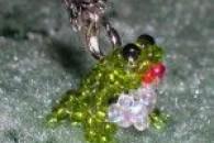 Покрокове плетіння жаби з бісеру