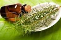 Застосування олії чайного дерева
