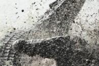 Психологія вуличної бійки