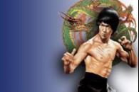 Стилі бойових мистецтв