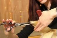 Стрижка гарячими ножицями