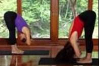 Відео - йога для початківців
